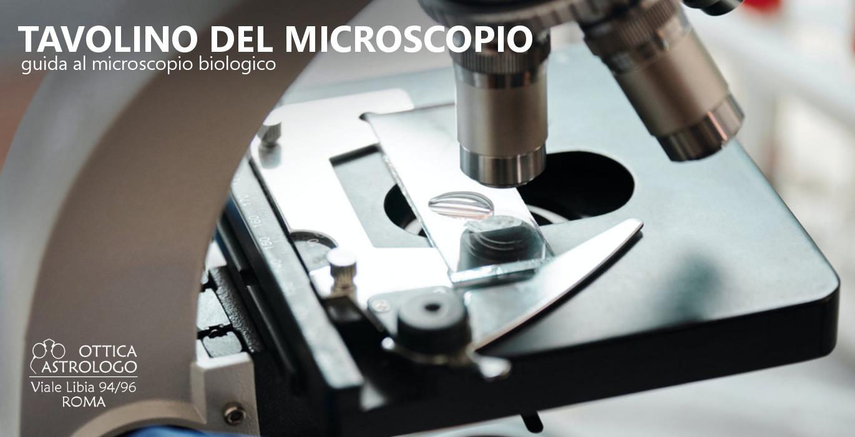 tavolino del microscopio